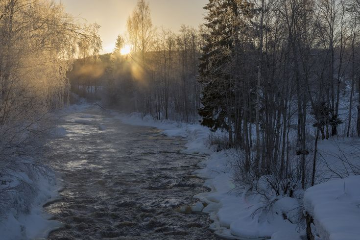 Stream in the forest with fog over open water and the sun going down in the background, picture from the Northern Sweden.