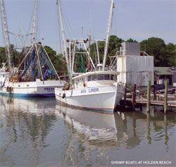 36 best shrimp boats images on pinterest fishing boats for Commercial fishing boats for sale by owner