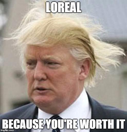 f37382e4fc025c6ce4c6b46b45be9c53 donald trump funny pinterest hair the 25 best donald trump hair meme ideas on pinterest donald