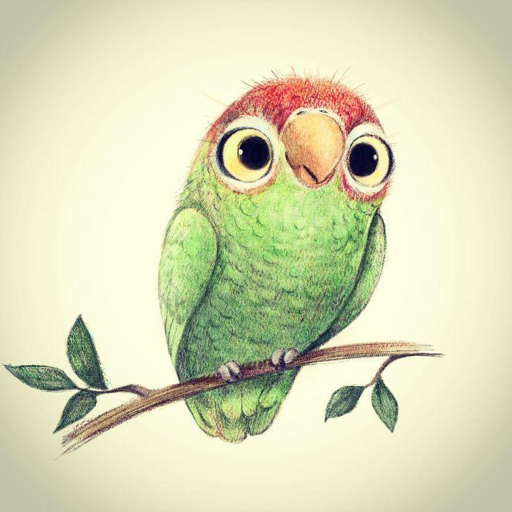 Pretty bird! #parrot #birdsofinstagram #illustration #artistsoninstagram #cartoon #cute #artistsofinstagram #petey #birdillustration #putabirdonit