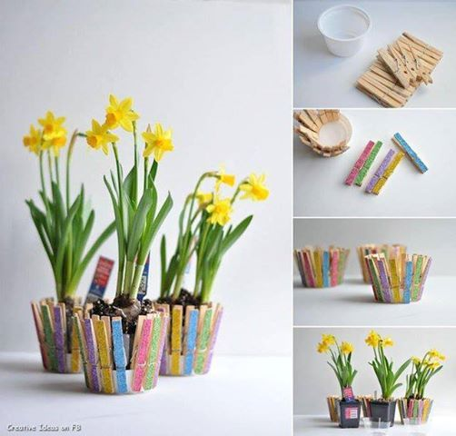 DIY potted plant