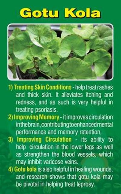 Gotu Kola is one of the beneficial herbs in Javita energy/mind coffee !!  www.myjavita.com/LS