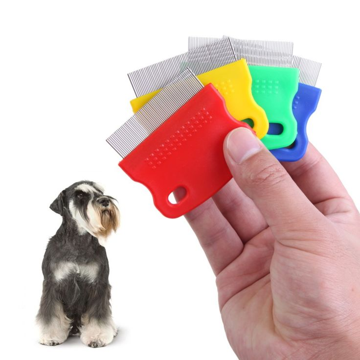 Pet Dog Puppy Cat Hair Flea Removal Cleaning Toothed Comb Grooming PTSP
