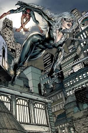 Spider-Man & Black Cat - David Finch by rosario