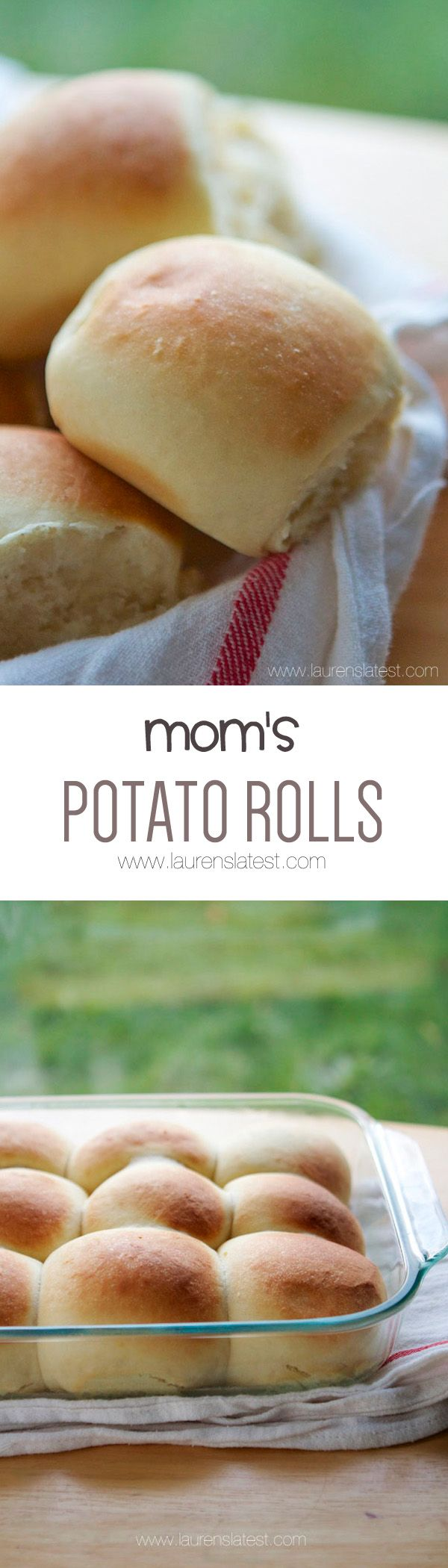 Mom's Potato Rolls... soft and fluffy. :)