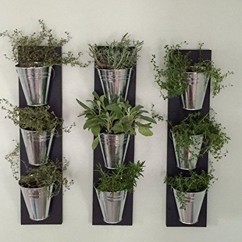 Best 25 Indoor Wall Planters Ideas On Pinterest Herb