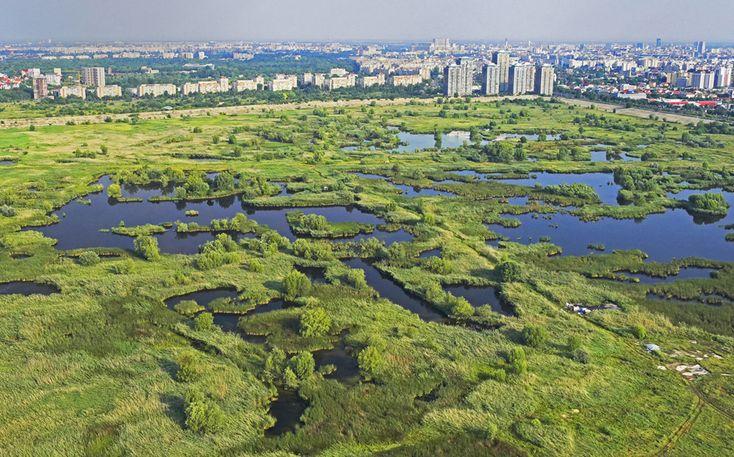 #Bucharest Delta