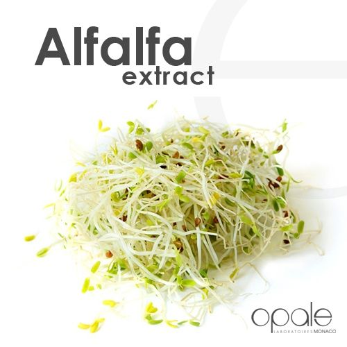 Alfalfa extract stimulates the synthesis of collagen. Revitalized, the skin recovers its radiant glow and wrinkles are reduced. Find its benefits in our skincare products: antiagering face and eye-lip care and antiwrinkle lift serum.