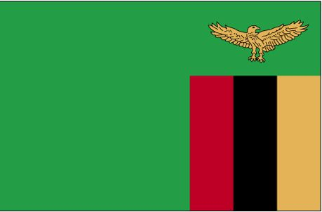 Zambia Flag  The flag was adopted October 24, 1964. Green represents agriculture, orange the country's copper, red symbolizes the struggle for freedom, and black represents the people.                         The eagle is from the country's official coat of arms.