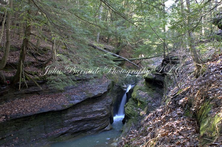 Boch Hollow State Nature Preserve – Robinson Falls – Julia Burnside Photography LLC