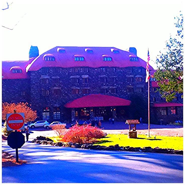 Blue Moose Cafe Asheville Nc
