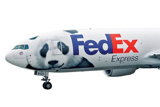 nice panda.: Transportation Work, Aviones Helicóptero, Avion Fedex, Cargo Airlines, Covers Avion, Animal Transportation, Airplane Species, Pandas Planes, Air Cargo