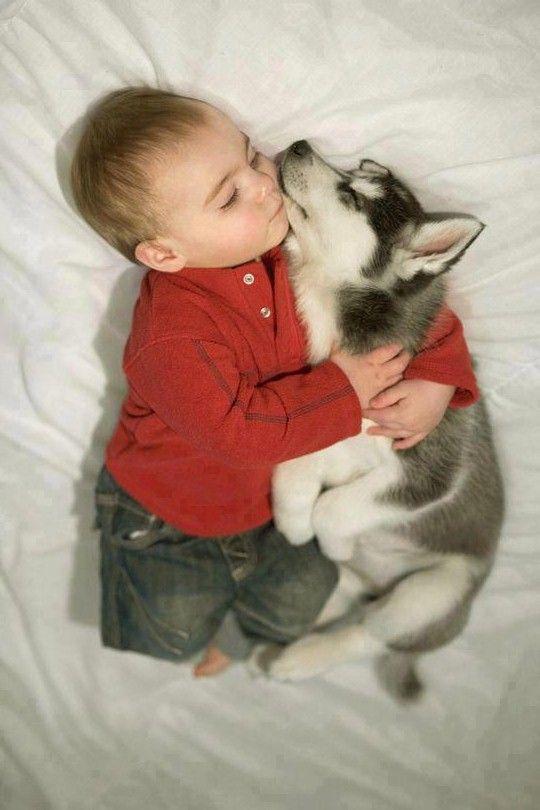 отель фото с щенками хаски и малышом годовалым значит, что