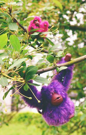 Kipling Monkey
