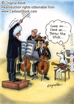 What happens when a dog joins the orchestra? #music #humor
