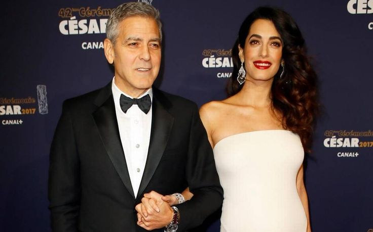 George and Amal Clooney donate to Cocker Spaniel rescue in L.A. | The Sacramento Bee