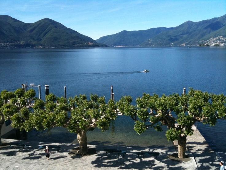 Lungolago con vista Lago Maggiore