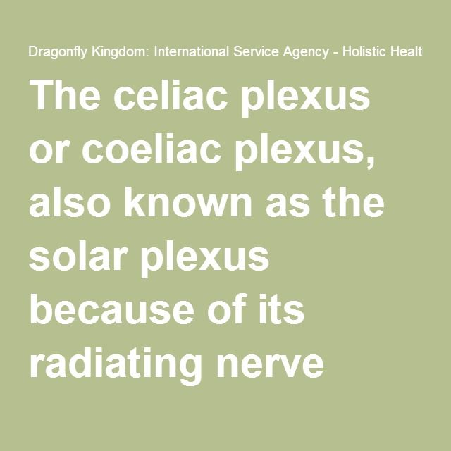 The celiac plexus or coeliac plexus, also known as the solar plexus because of its radiating nerve fibers