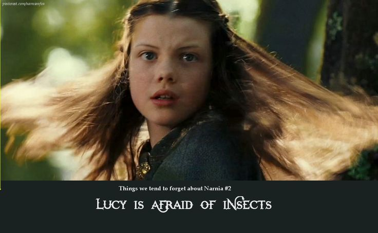 Small facts about Narnia - Lucy's fear