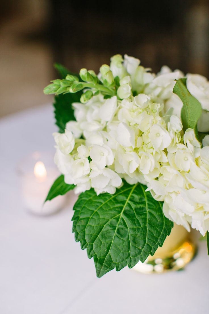 detail of gold julep cup filled with white hydrangea  and white snapdragon.