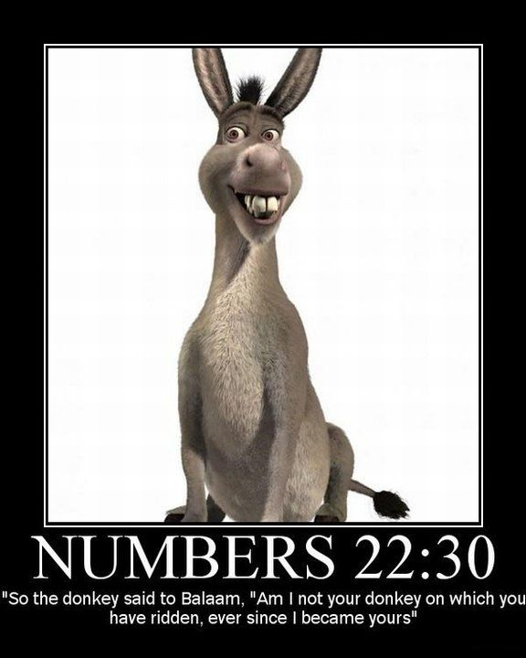 Talking donkeys, who knew? It must be true... it says so in the bible.