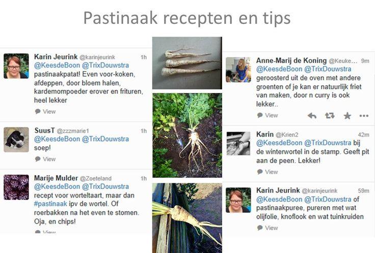 pastinaak, pastinaken, tips, recepten, hoe pastinaak klaarmaken, recept pastinaak, pastinaakfriet, pastinaak bakken, pastinaak rauw, pastinaaksoep, vergeten groenten, vergeten groente.  Dit en veel meer op tuinblog De Boon in de Tuin op http://deboon.blogspot.nl