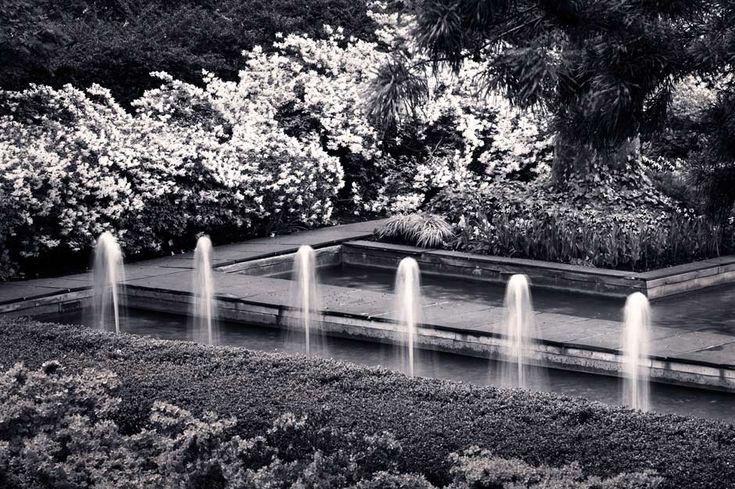 Rockefeller University, New York, NY | The Landscape Architecture Legacy of Dan Kiley, photo copyright Benjamin Dimmitt, 2013.