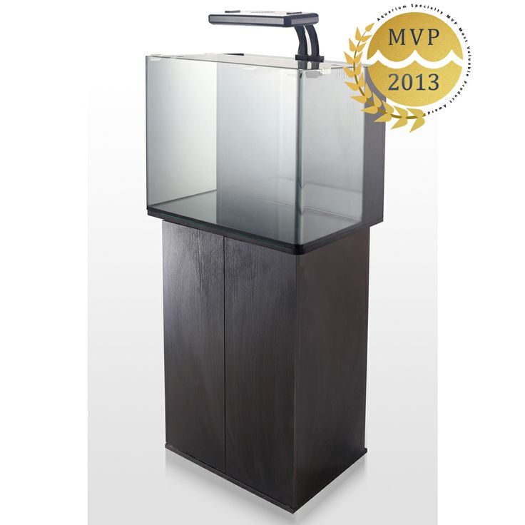2013 mvp award for best all in one aquariums innovative for 38 gallon fish tank