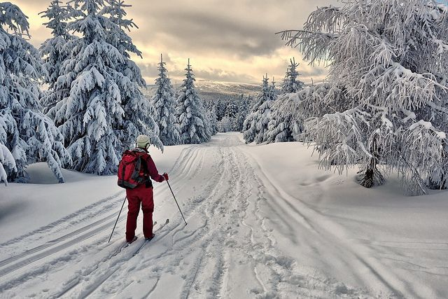 cross country skiing.  Try this in Pamporovo!  http://www.chaletsatpamporovovillage.com/