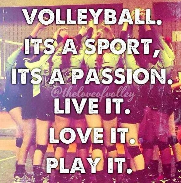 <3 volleyball