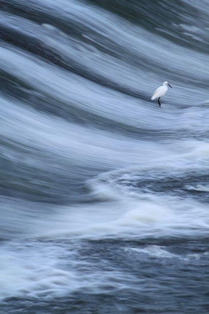 風が吹いてできた写真のようだが、地形と水の境目がよくわからない。全部が水のようにも見える