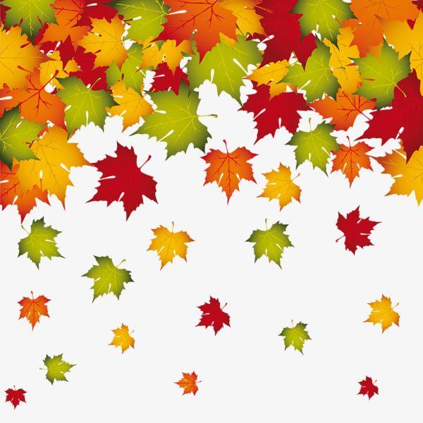 Falling Autumn Leaves Border Frame Akiba Floating Leaves Png Transparent Clipart Image And Psd File For Free Download Fall Leaf Decor Leaf Art Autumn Leaves