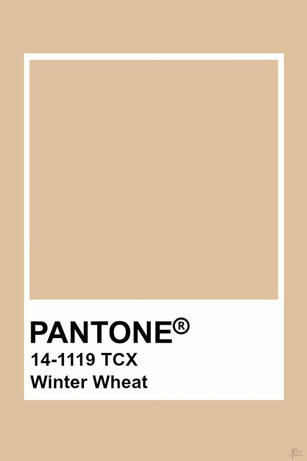 Pantone Winter Wheat In 2019 Colour