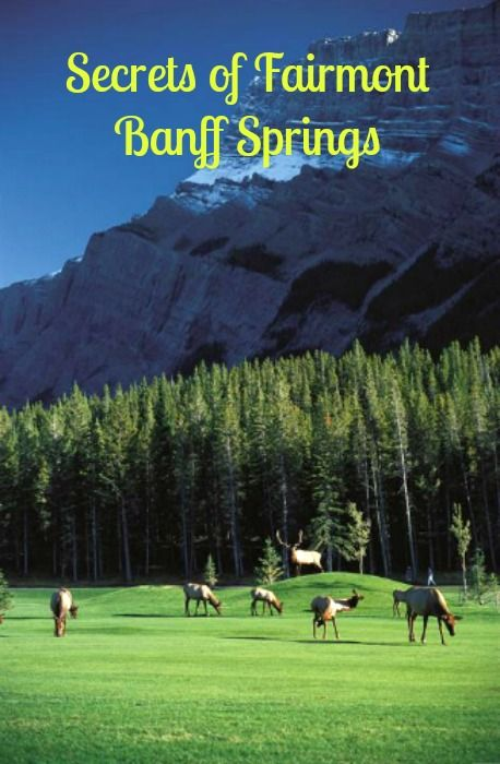 10 secrets for staying at the Banff springs hotel
