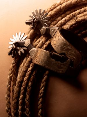 Lariat and spurs