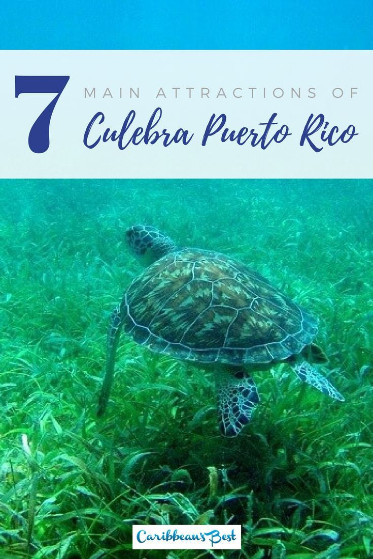Here are some of the main attractions for tourists to do and see when visiting Culebra Puerto Rico.
