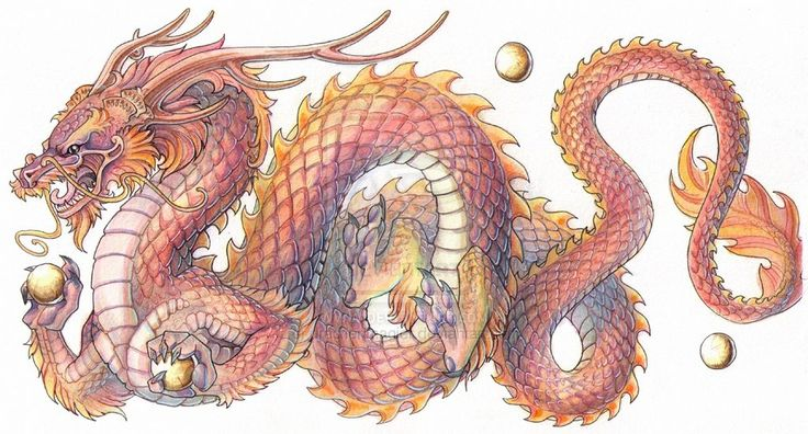 Chinese+Dragon+Drawings | Commission - Chinese Dragon by drachenmagier on deviantART