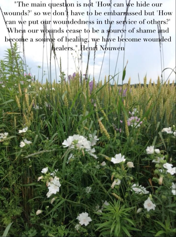 """""""When our wounds cease to become a source of shame and become a source of healing, we have become wounded healers."""" Henri Nouwen"""