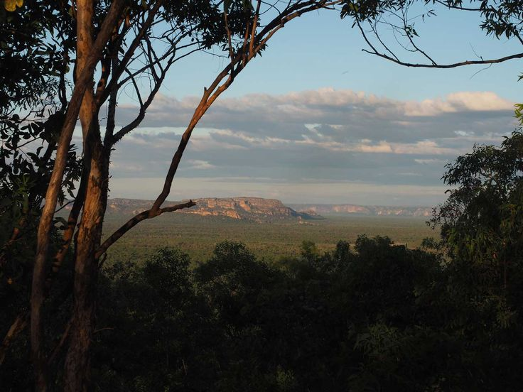 Kakadu Walks   Mirrai Lookout Track Notes
