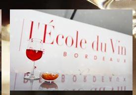 ecole du vin BORDEAUX ボルドーの市内にあるレコール・デュ・ヴァン(ワインスクール)です。学校では、ワインのことを知りたいと熱望する生徒さんに対して、誠心誠意を持ってワインの知識やワインを取りまく環境、また視覚、嗅覚、味覚のすべてを通して、ワインの世界をお教えています。