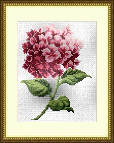 CS 721 Ortensia rosa croce starter kit di ColeshillCollection