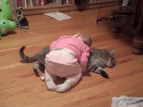 #BuonaNotte..lei mi ha preso per cuscino! #madai