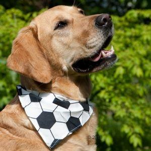 Bandana per cani con fantasia a palla da calcio