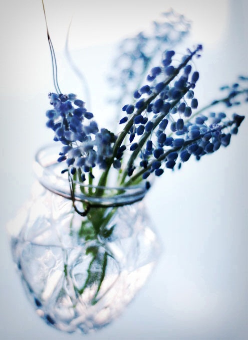Blue flowers in vase are a nice touch
