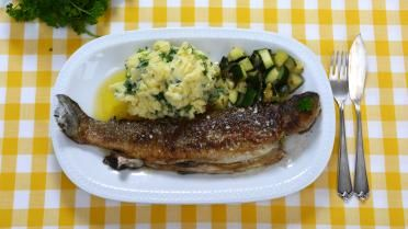 Gebakken forel met peterseliepuree en gebakken courgette