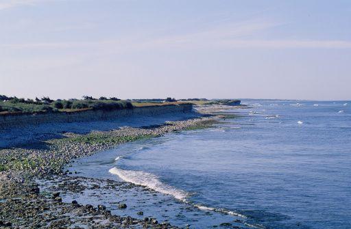 Ile d'Oleron in Charente Maritime, France