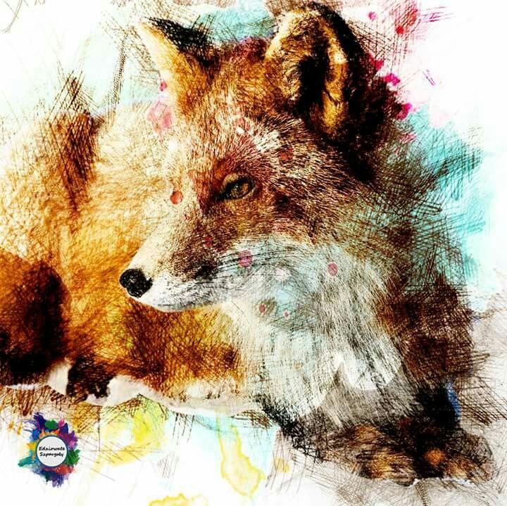 Kolorowy lis, grafika na koszulkę od Edziowate Szpargały // Colorful fox, graphic pattern for t-shirt, check https://m.facebook.com/edziowateszpargaly/