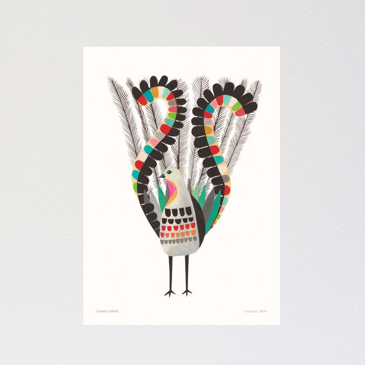 inaluxe image of Superb Lyrebird