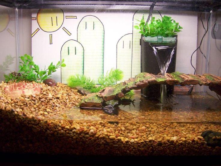 Pet hermit crab tanks - photo#7