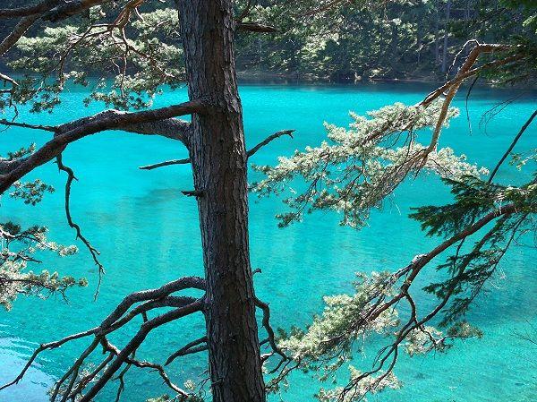 Grüner See, Steiermark wurde in Österreich aufgenommen und hat folgende Stichwörter: Tragö.